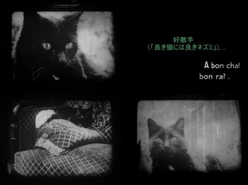 1909 - 9.5mm 『好敵手(良き猫には良いネズミ)』01