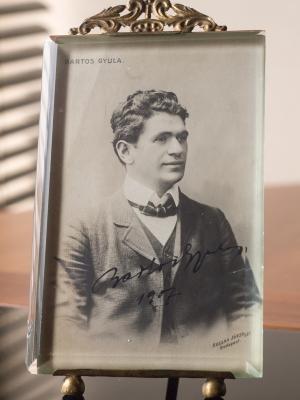 Bartos-Gyula
