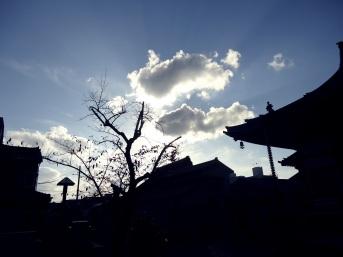 20151101 川田芳子墓参02