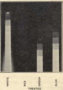1919 - Hypersensitizing commercial panchromatic plates