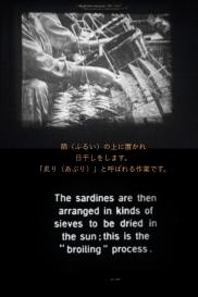 c1910 - 9.5mm 『オイルサーディンができるまで』04
