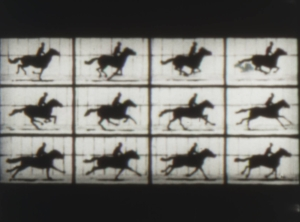日本映画史05 - メイブリッジ01