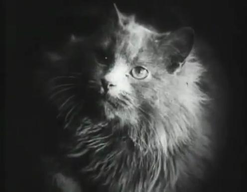 Marizza (1922)