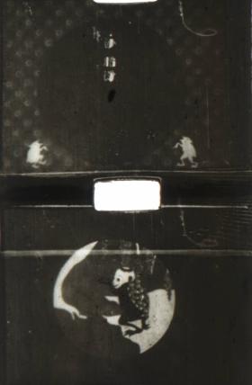 1926-songoku12