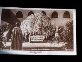 late-1920s-nibelungen-postcard11
