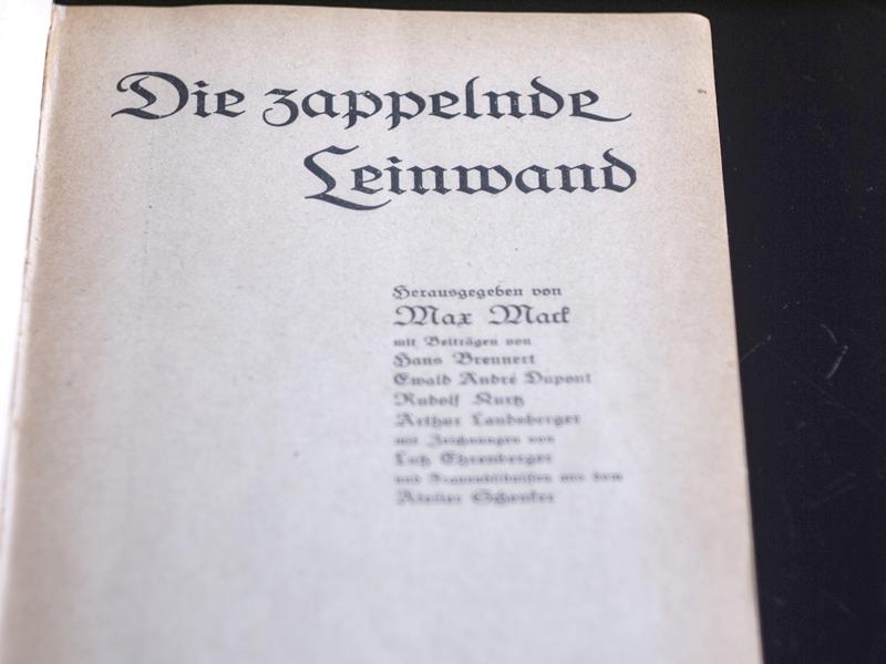 1916-zappelnde-leinwand- (22)
