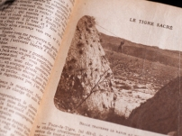 1920-le-tigre-sacre-avec-ruth-roland-13