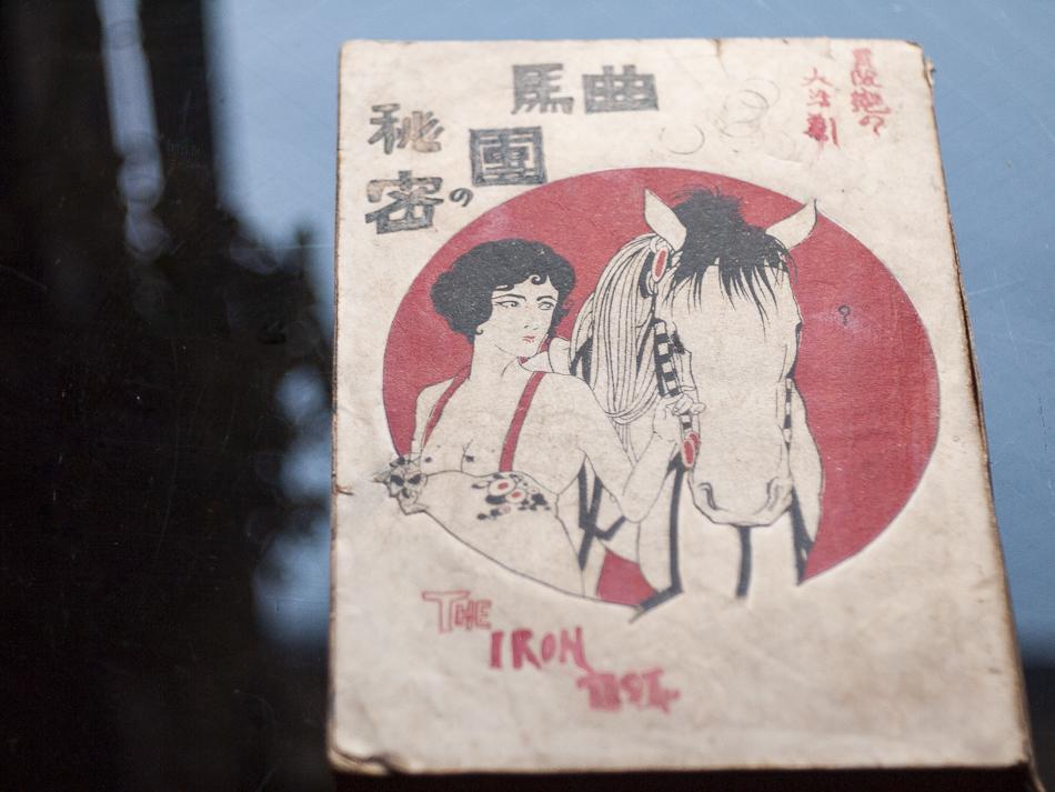 大活劇文庫『曲馬団の秘密』篠田緑水訳