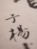 小織桂一郎02